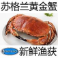 �K格�m�S金蟹,英������m面包蟹